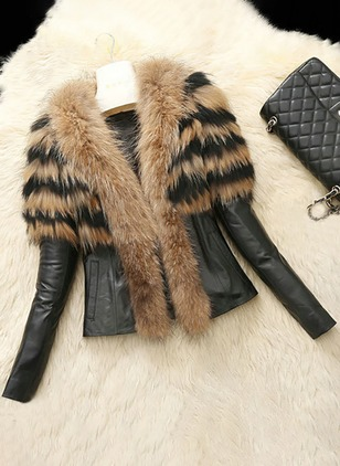 Long Sleeve Other Pockets Unremovable Fur Collar Coats