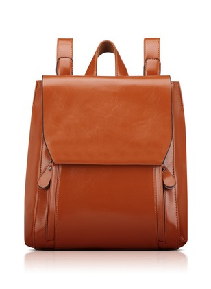 Backpacks Real Leather Double Handle Bags
